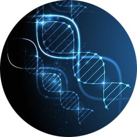 biotechno-b